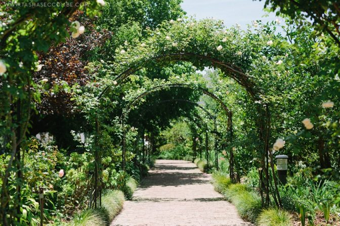 Creation_Events_Destination_Wedding_Franschhoek_Wedding_Planner-4-e1533302207315