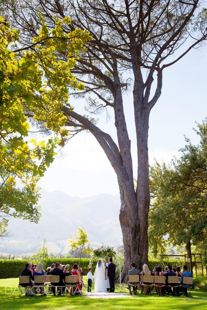 Grand Provence (27)
